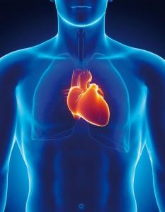 Eine der Haupttodesursachen in Deutschland: Akuter Herzinfarkt. Foto: istockphoto.com