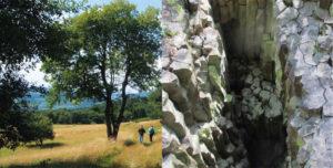 Impressionen aus dem Geo-Naturpark Frau-Holle-Land. Fotos: © Geo-Naturpark Frau-Holle-Land